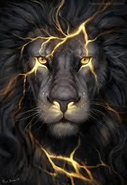 King Lion iPhone Wallpaper Wallpaper ...