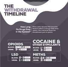 Drug Chart For Drugs In Your System Drug Testing Methods And Timeline For The Top 8 Most Abused