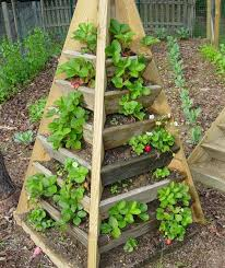 strawberry patio planter luxury at how to build a pyramid strawberry planter diy plans