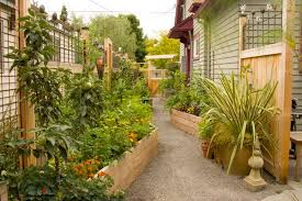 Small Picture The Kitchen Garden Gardening Ideas