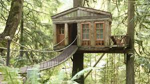 Nebraska Woman Builds A Lifesize Tree House To Fulfill Her Treehouse Masters Free Episodes