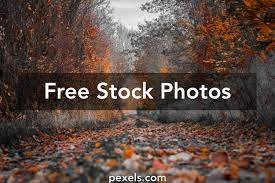 80,000+ Best Hd Background Photos · 100 ...