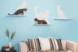 cats on cat shelves above a couch