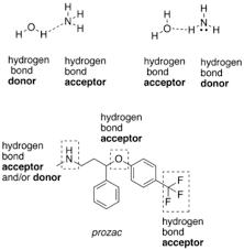 Hydrogen Bonding Hydrogen Bond Wikipedia
