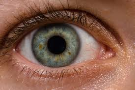 Image result for eye images