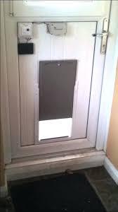 diy doggie door photo 1 of 6 automatic dog door beautiful door 1 diy doggie door diy doggie door