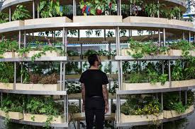 ikea is bringing its giant growroom to sydney yes you can hang in it