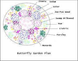 Small Picture Butterfly Garden Plan ufzAl42L Backyard Garden Pinterest