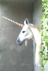 unicorn wall mount if you want the head of a mounted on nz white unicorn head wall mount