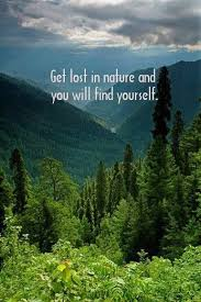 Best Quotes About Nature Beauty Best of 24 Famous Nature Quotes Sayings