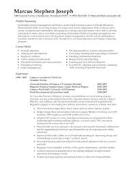 Professional Summary On Resume Skilled Abstract Resume Pattern ...
