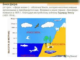 Презентация на тему Биосфера Тема урока Биосфера от греч  2 Биосфера