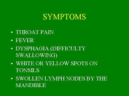 lymph vessels lymph