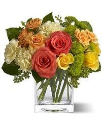 teleflora s citrus splash flower arrangement