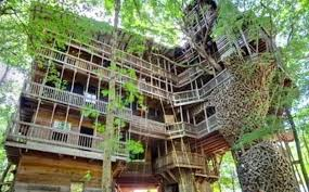 25 Best Tree House Hotels In The United StatesLargest Treehouse In America