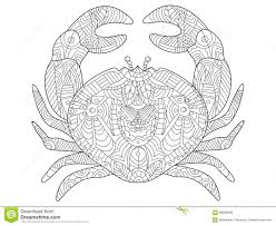 Small Picture Collection of Crab Coloring Pages Coloring Steps