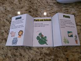 Venn Diagram Plants Print Cut And Fold Plants And Animals Folding Venn Diagram Tpt