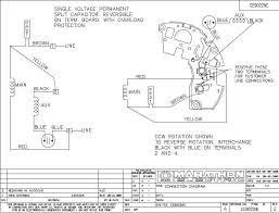 century electric motors wiring diagram wiring wiring diagram electric motor wiring diagram single phase at Electric Motor Wiring Diagram
