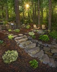 wooded backyard landscape backyard