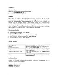 Application Developer Resume Web In Oracle Pl Sql Sample 21