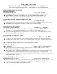 Sample Resume For Leasing Consultant Leasing Consultant Resumes Leasing Consultant Resume Example