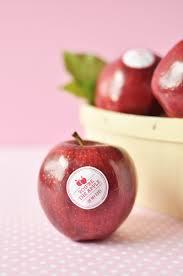 Valentine Fruit Twig Thistle Naturally Sweet Diy Valentine