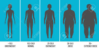 Creative Vector Illustration Of Bmi Body Mass Index Infographic
