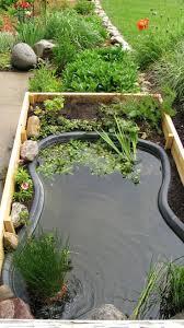 garden pond supplies. Full Size Of Garden Design:koi Pond Supplies Fish Ponds Pumps Backyard