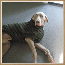Free Knitting Pattern For Large Dog Sweater