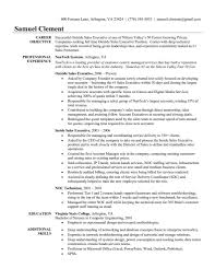 Sale Executive Resume Sample Sales Account Executive Resume