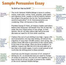 essay social darwinism write essay social darwinism