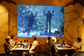 underwater restaurant disney world. Photo By Disney Underwater Restaurant World R