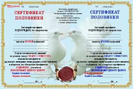 Шуточный диплом для влюбленных половинки дипломы грамоты  Шуточный диплом для влюбленных 2 половинки