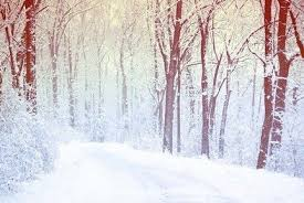 snow backgrounds tumblr. Simple Tumblr Gallery For U003e Tumblr Winter Backgrounds Throughout Snow S