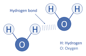 Hydrogen Bonding Soap And Water Interaction