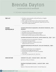 Resume Bullet Points Manager New Cover Letter It Sample Director
