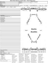 Pfizer Canine Dental Chart 78 Symbolic Pfizer Dental Chart