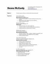 Resume Profile Statement Primary Resume Objective Examples To Obtain