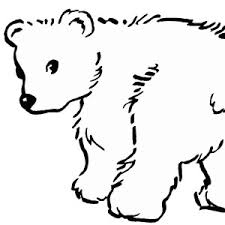Small Picture Baby Polar Bear Coloring Coloring Pages