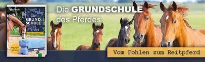 Pferdebücher Pferdevideos Und E Books Fnverlag Warendorf
