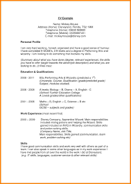 Resume Profile Examples For Students 100 personal profile format in word address example 48
