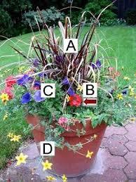 Best 25 Fall Flower Gardens Ideas On Pinterest  Fall Garden Container Garden Plans Flowers