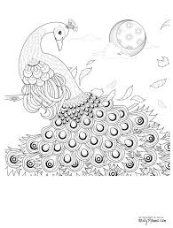 colored coloring pages i on peacock color drawing art print colored pencil