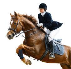 Geen Fit Paard Zonder Ruiterfitheid Lijf Gezondheid