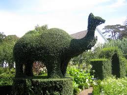 animal garden. Plain Animal 129747 L On Animal Garden 6