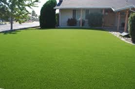 fake grass. LANDSCAPING Fake Grass