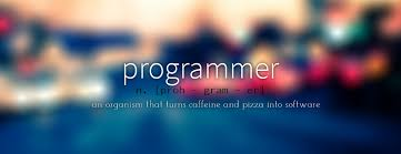 Programmer Cover Magdalene Project Org