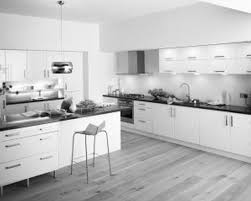 White Kitchens With Wood Floors Kitchen Foxy White Kitchen Idea With Modern Furnishings And