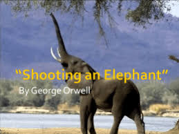 george orwell shooting an elephant shooting an elephant