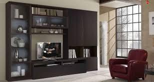 Modular Wall Storage Endearing Modern Showcase Design With Modular Wall Units Also Wall
